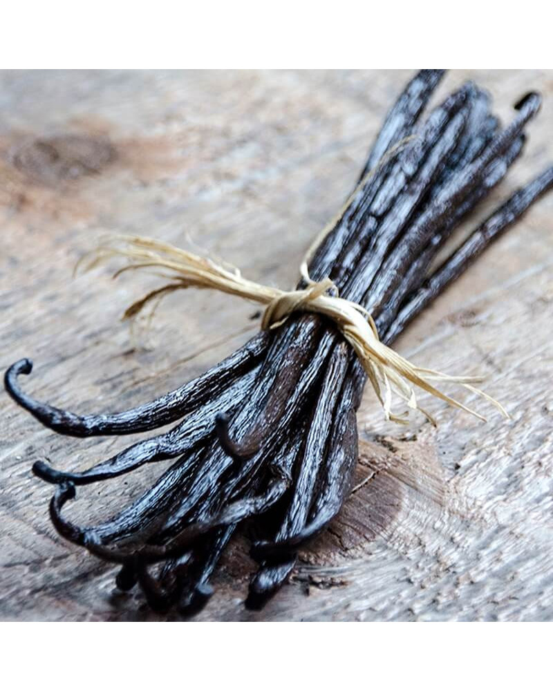 vanille-bourbon-gold-madagascar-2 The Bourbon vanilla of Madagascar